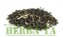China White Yun Cui Qingshan Organic!